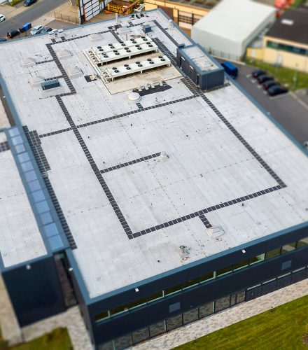 Allergopharma GmbH & Co KG, Hamburg